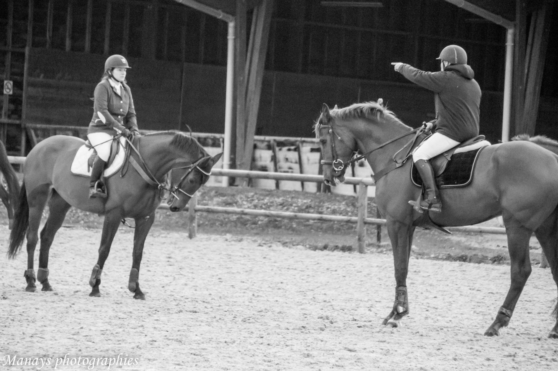 cours d'équitation et coaching en concours