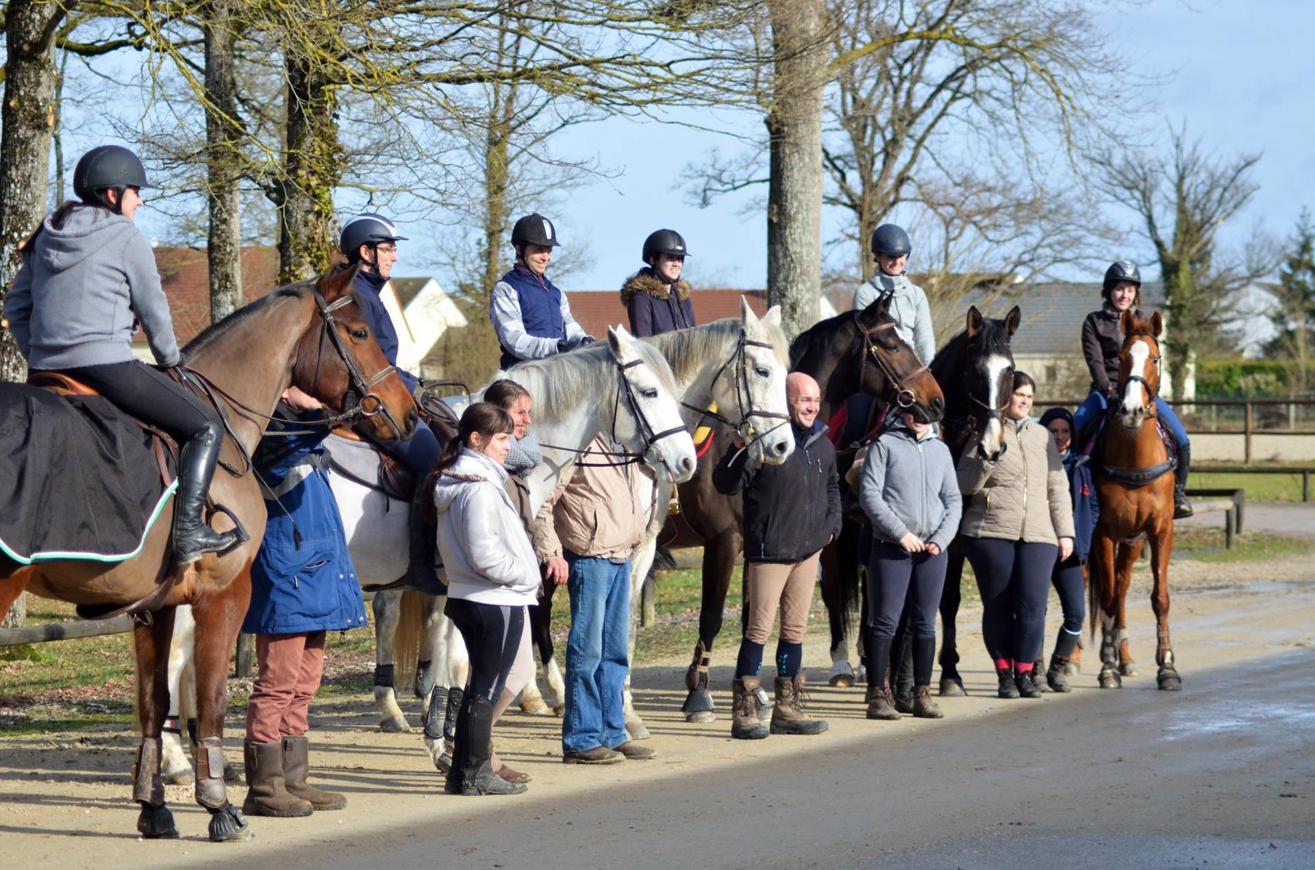 organisation de stage d'équitation en dressage et Obstacle